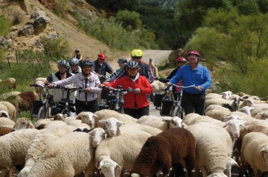 Radreisen in Spanien